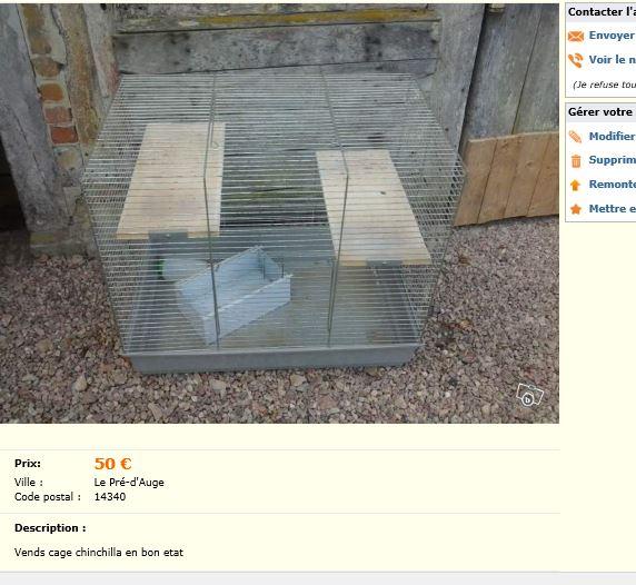 Cage trop petite, pas aménagée et planches non protégées