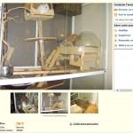 Cage en verre (trop d'humidité, risque de développement de teigne et de maladies respiratoires), bois rongé (origine du bois? on dirait du pin, mauvais)