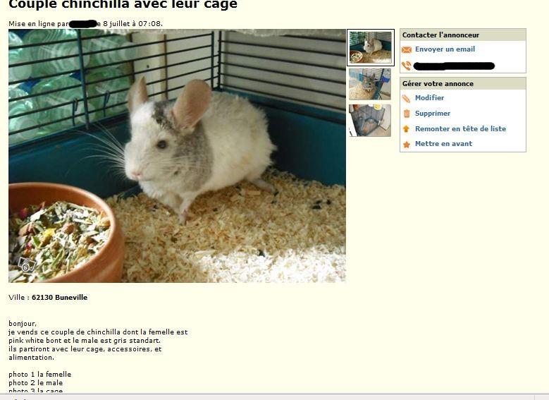 """Nourriture dans le pot type """"mélange"""" (dangereuse) + fur chewing + animaux vendus en tant que couple reproducteur!"""